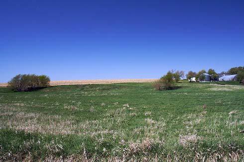 blue-hill-oye-farm.jpg